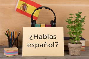 Español | Spanish to English Translation - SpanishDict
