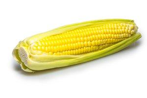 corn wasn't a popular food in Latin America