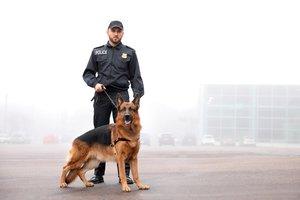 to patrol