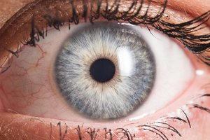 la pupila
