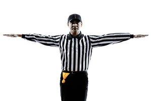 el árbitro, la árbitra
