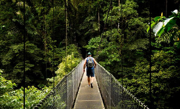 rope bridge in costa rica
