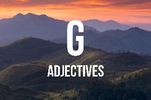 """Adjetivos con """"g"""""""