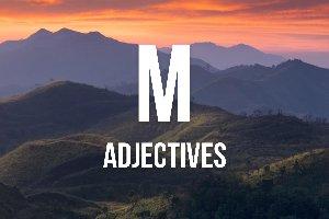 """Adjetivos con """"m"""""""